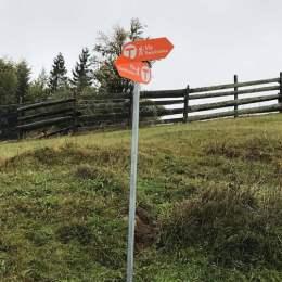 Primii o sută de kilometri din Via Transilvanica au fost omologați de către Ministerul Turismului. Traseul, care va trece prin Brașov, a fost inspirat de potecile de pelerinaj din Spania
