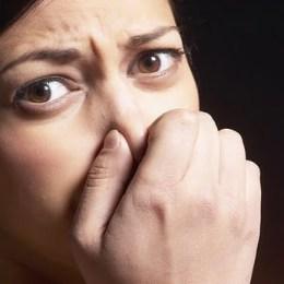 """Legea mirosurilor a devenit oficială. Primăriile pot închide activitățile """"puturoase"""""""