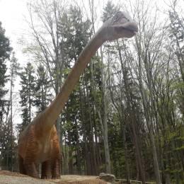 VIDEO Cel mai mare dinozaur descoperit până acum în lume poate fi văzut la Râșnov. Ce alte atracții le-au fost pregătite vizitatorilor la Dino Parc