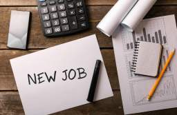 eJobs: Cererea depășește cu mult oferta de locuri de muncă. Care sunt cele mai căutate job-uri și cine va trebui să se reprofileze