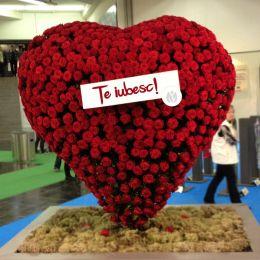 O florărie din Brașov pregătește, de Valentine's Day, un aranjament floral de 1.000 de euro