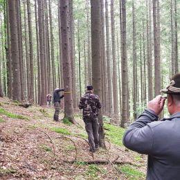 Starea de sănătate a pădurilor Brașovului, în suprafață de 14.616 hectare, administrate de Regia Publică Locală a Pădurilor Kronstadt RA, este monitorizată până la cele mai mici detalii