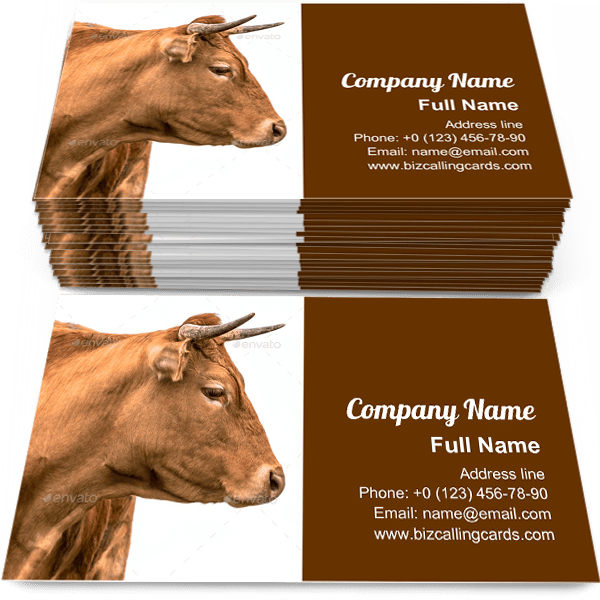 Sample of Young cattle with horns calling card design for advertisements marketing ideas and promote countryside branding identity
