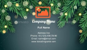 Merry Christmas and New Year Business Card Template
