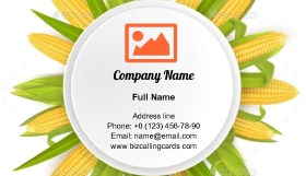 Sweet Corn Frame Business Card Template