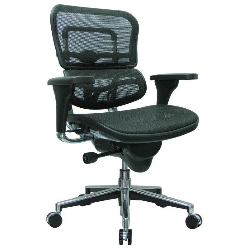 raynor eurotech ergohuman mesh mid back task chair black best cheap computer group companies came8erglo w09 1 euro bizchair
