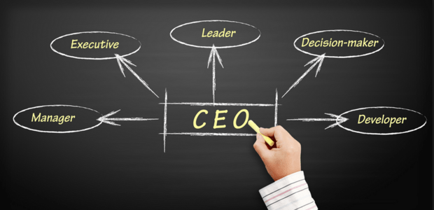 Main Traits of Successful CEOs