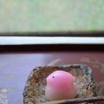 礫正方小皿 Takahiro Hosokawa -都鳥ー