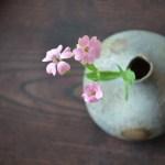 備前ちび花器 Takahiro Hosokawa -道灌草-