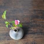 備前ちび花器 Takahiro Hosokawa -小さい椿-