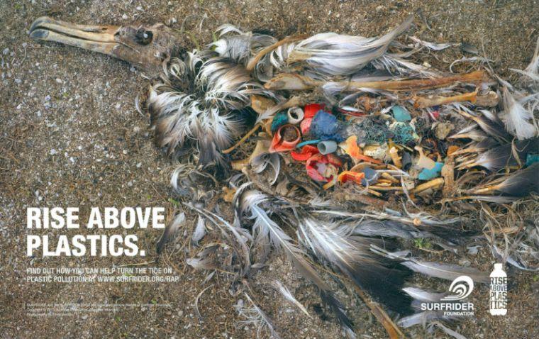 rise-above-plastics-1200