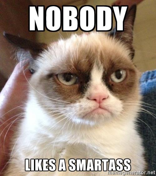 Nobody likes a smartass meme