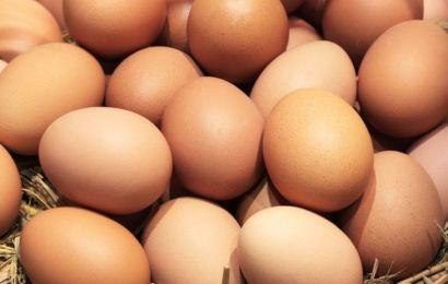 """Piaţa ouălor, la control! Consiliul Concurenței verifică modul în care au """"explodat"""" prețurile"""