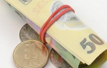 Un parlamentar propune ca alocațiile să nu se mai dea în bani!