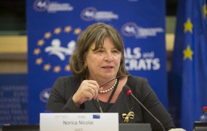 """"""" Până nu voi avea convingerea că avem organizații puternice în fiecare localitate a județului Gorj, conferința de alegeri nu va avea loc """" declară europarlamentarul Norica Nicolai."""