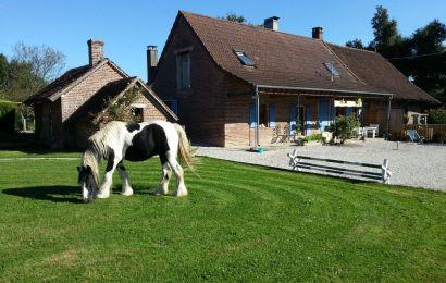 15.000 euro pentru fermele mici, prin Programul Național de Dezvoltare Rurală