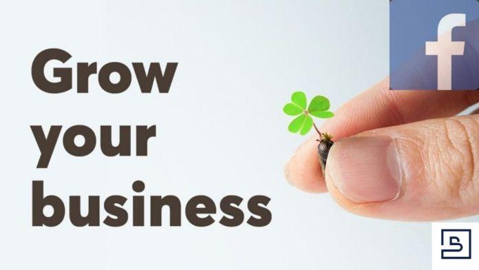 Bizopzone- grow your business via facebook networking