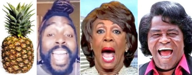 maxine waters james brown wig song reclaiming my time Mykal Kilgore