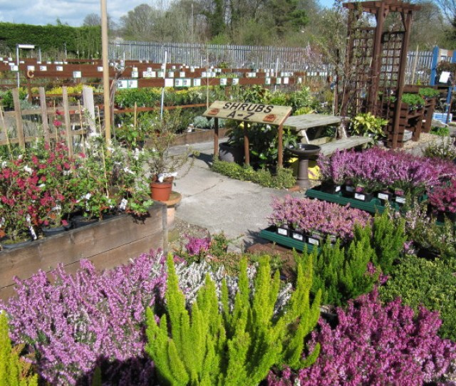 Nurseries And Garden Centers Businesses For Sale Buy Nurseries And Garden Centers Businesses At Bizquest