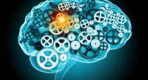 cognitive-ability bizsiziz.com