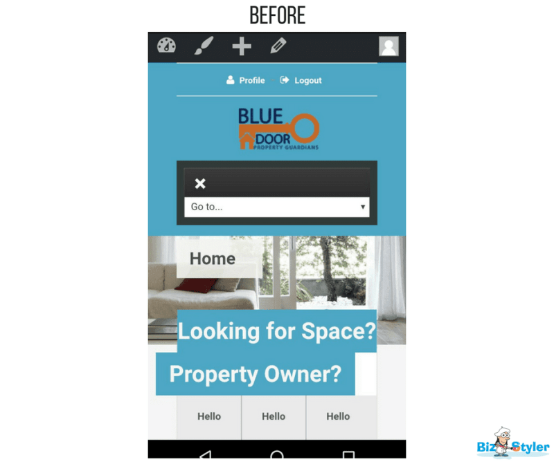 Bizstyler - Client - Blue Door Property Guardians - Website Before