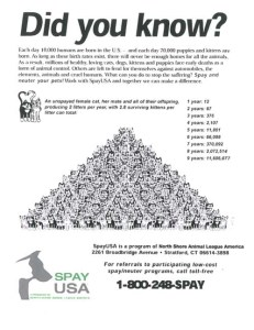 How many cats can come from one cat show on cat pyramid chart
