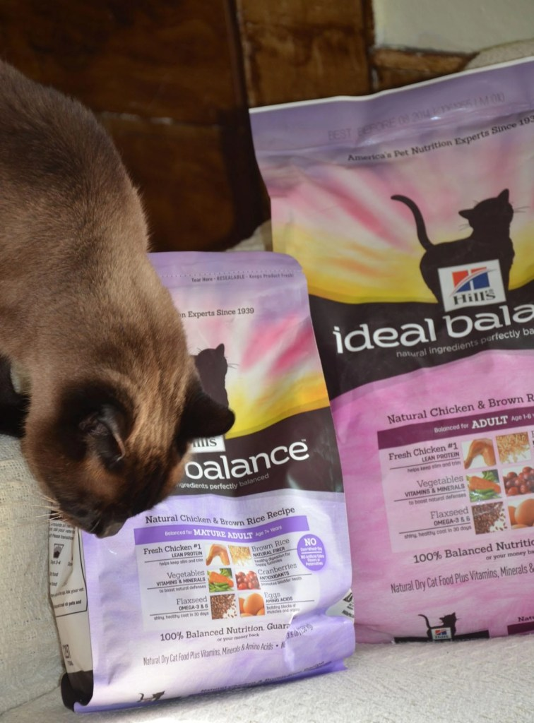 Linus checks out Hill's Ideal Balance Dry Cat Food, not for this give-away, but as something he really likes.