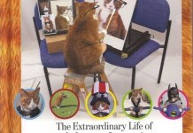 All Nine Lives, The Extraordinary Life of Buffy the Cat
