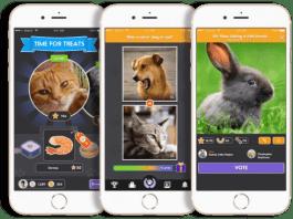 Pet Parade app offers fun photo contest