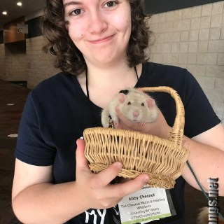 Oliver, a pet therapy rat