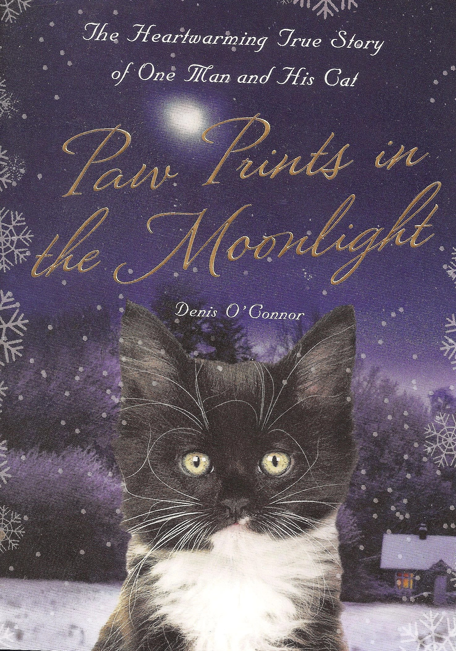 16723cd65b Paw Prints in the Moonlight tells how cats become our best friends ...