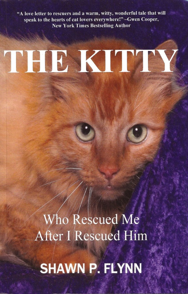 Cats change our lives for the better. Author Shawn Flynn tells just how much so in 'The Kitty Who Rescued Me After I Rescued Him'.