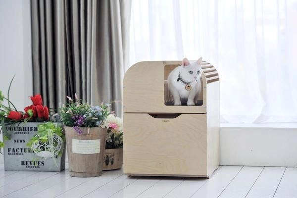 Picture of litter box