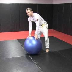 Ergonomic Chair Joe Rogan Recliner Lift Workout Ball  Eoua Blog