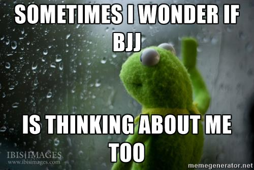 kermit is BJJ thinking about me