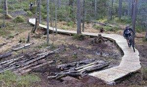 NATURSYKKELSTI: Nå kan terrengsyklister glede seg over en tilrettelagt 8 kilometer lang sti mellom Rustadsaga og Skullerud.