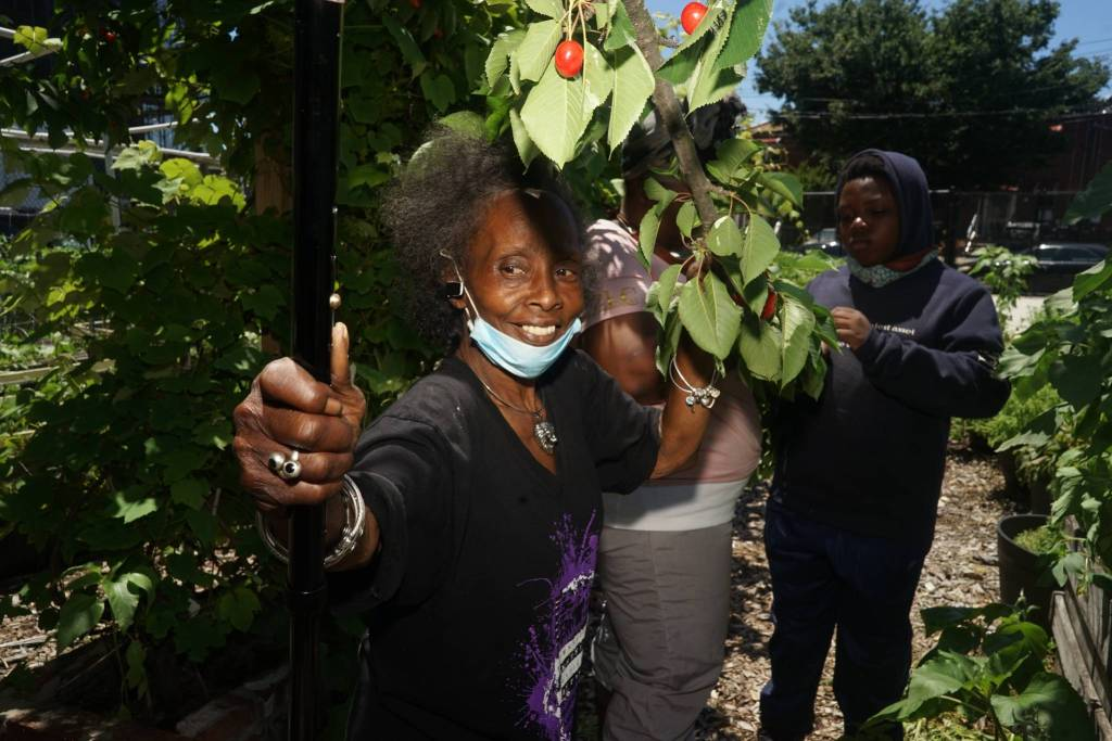 Brenda Dushane mentors women in the community to run other community gardens in the neighborhood. Photo by Russell Frederick.