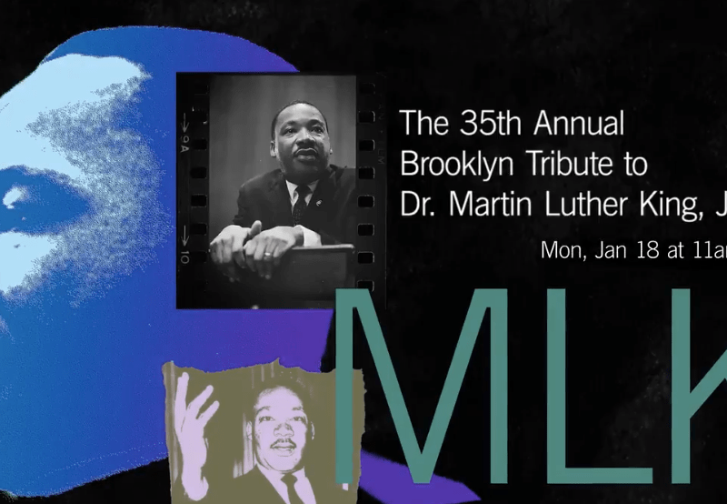community, Brooklyn, BAM, Dr. Martin Luther king Jr., art, vitrual, Timothy DuWhite, Alicia Garza, Black community