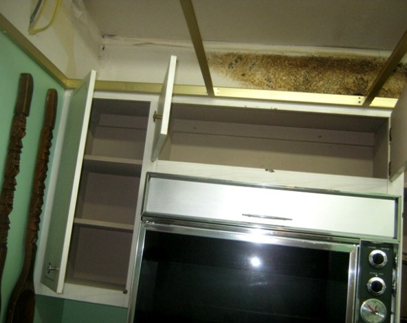 Black Mold Behind Kitchen Cabinets | www.resnooze.com