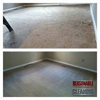 Carpet Cleaning Whole House - The Marketplace