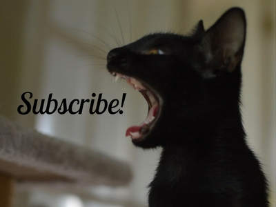 Subscribe for news and updates.
