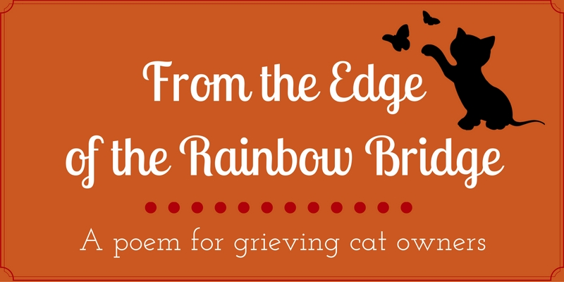 From the Edge of the Rainbow Bridge_fi