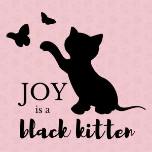 Joy is a Black Kitten