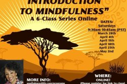A Soulful Introduction to Mindfulness - Online Class