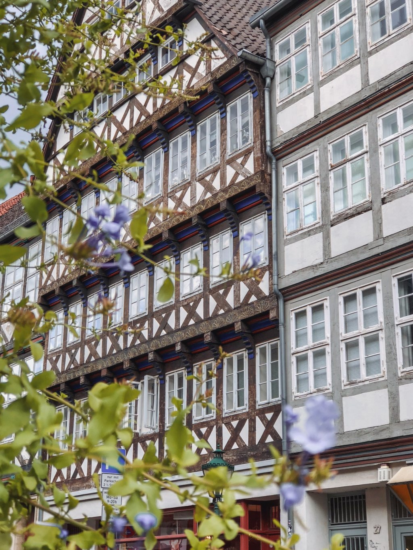 """Altstadt-Hannover-Kramerstr """"width ="""" 1024 """"height ="""" 1365 """"srcset ="""" https://i0.wp.com/www.blackdotswhitespots.com/bdws/wp-content/uploads/2019/09/Altstadt-Hannover-Kramerstr.jpg?w=1160&ssl=1 1024w, https://www.blackdotswhitespots.com/bdws/wp-content/uploads/2019/09/Altstadt-Hannover-Kramerstr-375x500.jpg 375w, https://www.blackdotswhitespots.com/bdws/wp-content/uploads /2019/09/Altstadt-Hannover-Kramerstr-768x1024.jpg 768w, https://www.blackdotswhitespots.com/bdws/wp-content/uploads/2019/09/Altstadt-Hannover-Kramerstr-225x300.jpg 225w, https : //www.blackdotswhitespots.com/bdws/wp-content/uploads/2019/09/Altstadt-Hannover-Kramerstr-330x440.jpg 330w, https://www.blackdotswhitespots.com/bdws/wp-content/uploads/ 2019/09 / Altstadt-Hannover-Kramerstr-690x920.jpg 690w, https://www.blackdotswhitespots.com/bdws/wp-content/uploads/2019/09/Altstadt-Hannover-Kramerstr-435x580.jpg 435w """"maten = """"(max-breedte: 1024px) 100vw, 1024px"""" /></p data-recalc-dims="""
