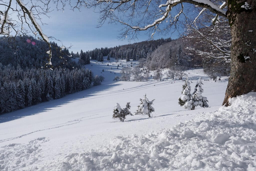 Excursietip winter Schwäbische Alb