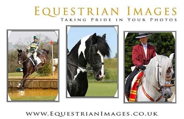 Equestrian Images
