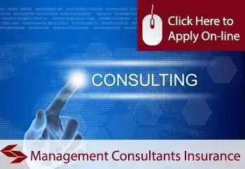 Management Consultants Professional Indemnity Insurance