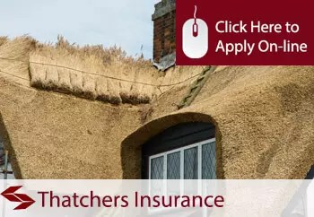 tradesman insurance for thatchers