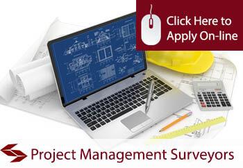 Project Management Surveyors Professional Indemnity Insurance